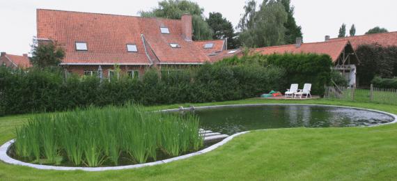 ecologische zwemvijvers