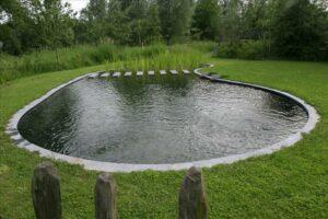 Landelijke zwemvijver