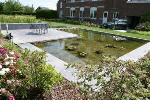 Speelse tuinvijver met natuurlijke filtering