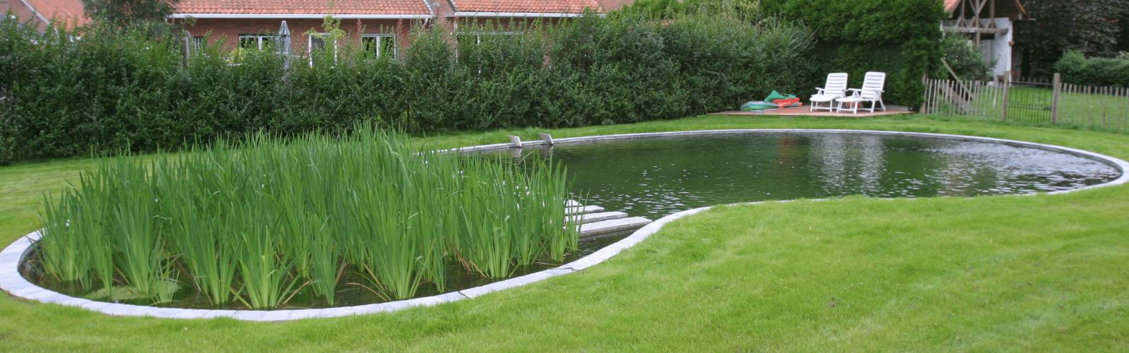 Ecologische zwemvijvers met natuurlijke filtering