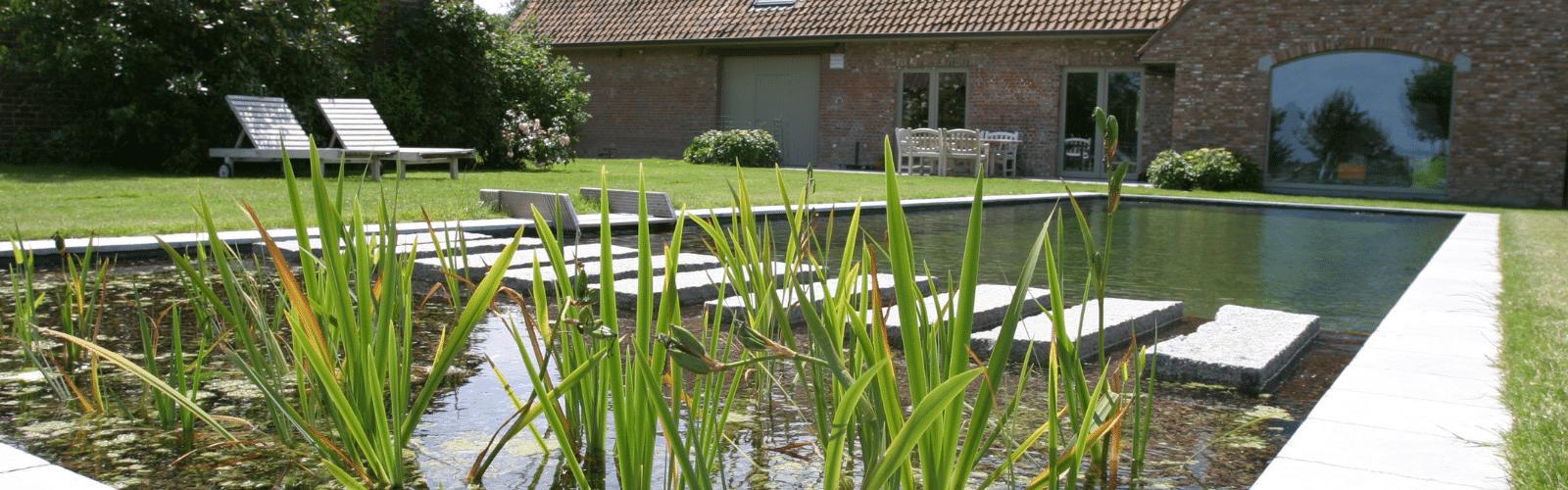 Ombouw zwembad naar zwemvijver