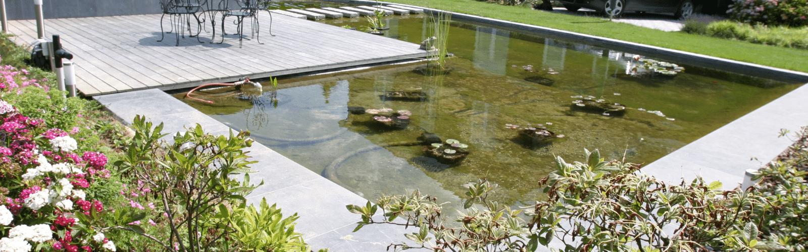 Renovatie zwemvijvers